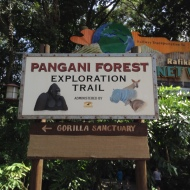 Pangani Forest Expedition Trail
