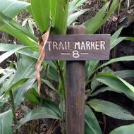 Trail Marker 8
