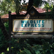 The Wildlife Express Train