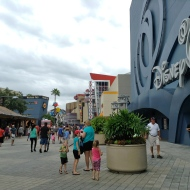 Overview of DTD