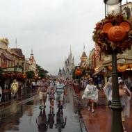 Still pretty in the rain!