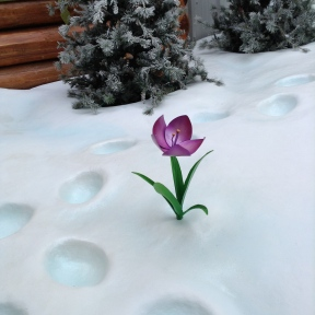 Olaf's Flower!